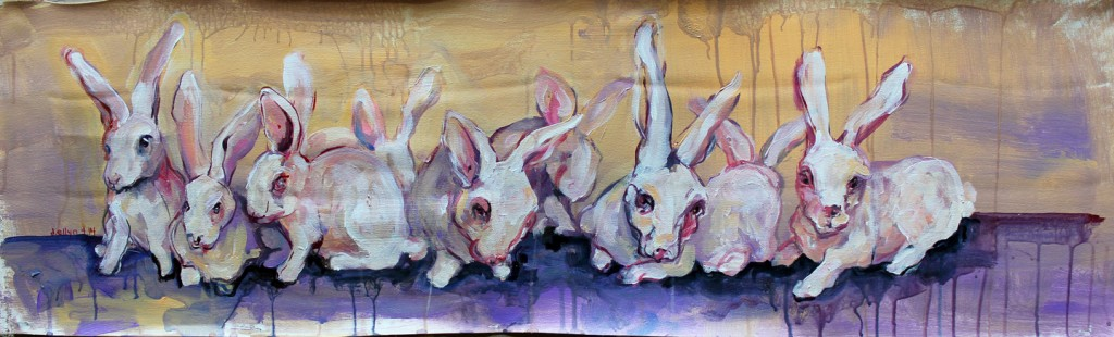 dana ellyn rabbits