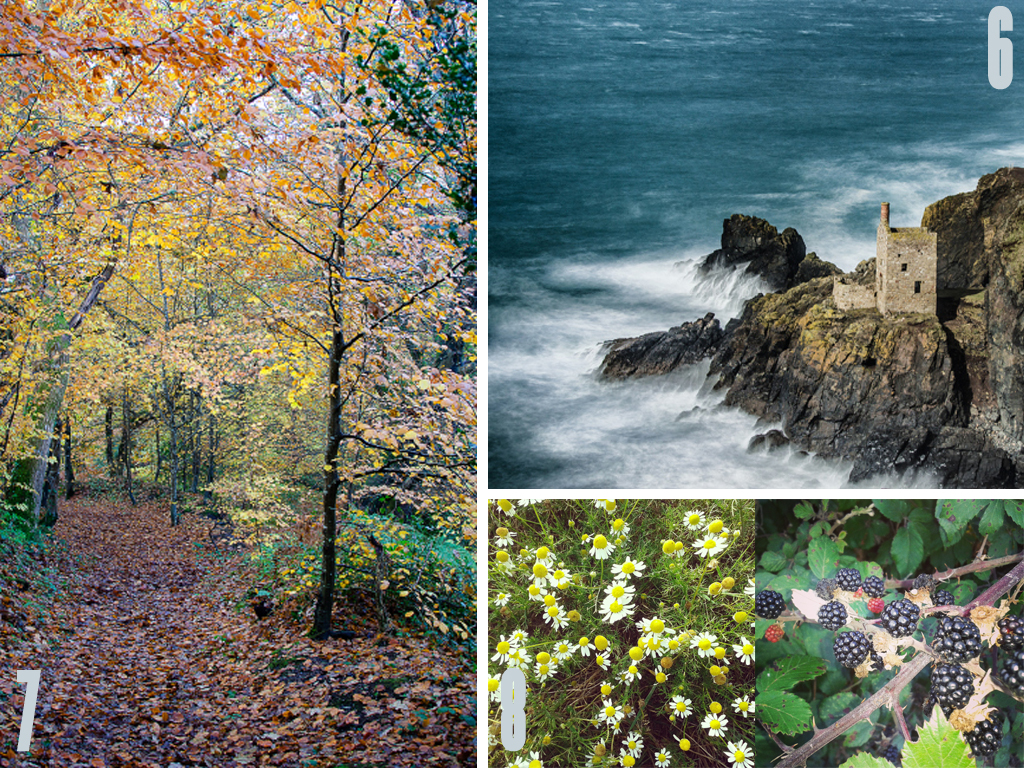 Cornwall Collage 3 copy