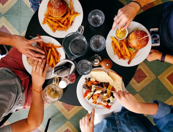 5 fundamental tips for traveling with Omnivores